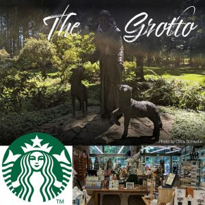 grotto and starbucks