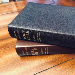 NLT-bibles
